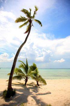 malerische-Karibik